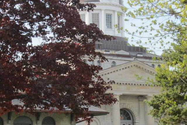 金士顿市议会