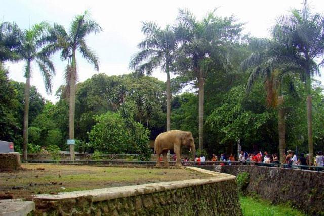 拉古南动物园
