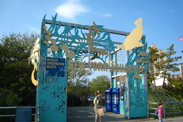 纽约水族馆