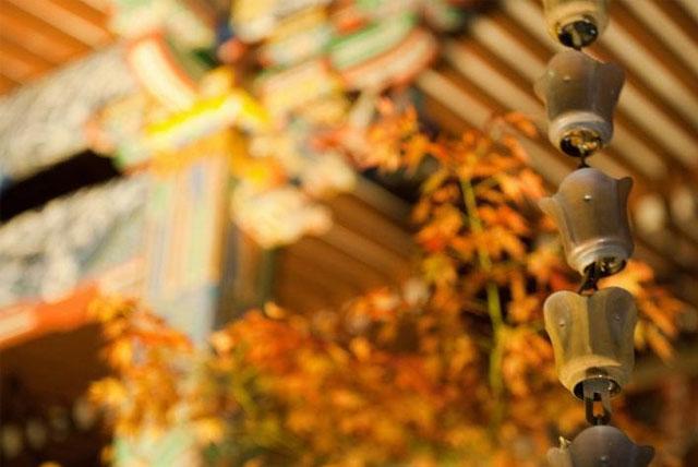 永观堂禅林寺