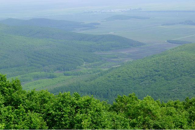 五顶山森林公园