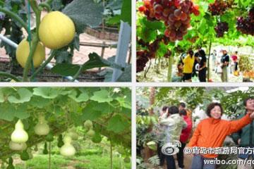 青岛市蔬菜科技示范园有限公司是海泰生态科技集团有限公司的核心子公