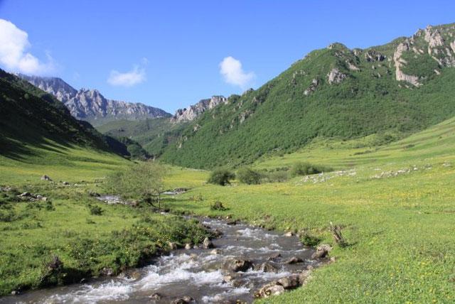渭河源森林公园