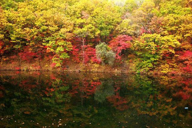 本溪森林公园