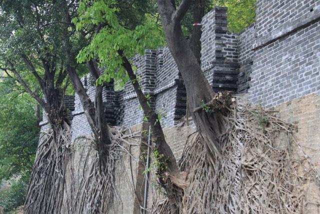 明代古城墙