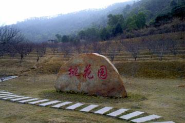 碧岭生态村