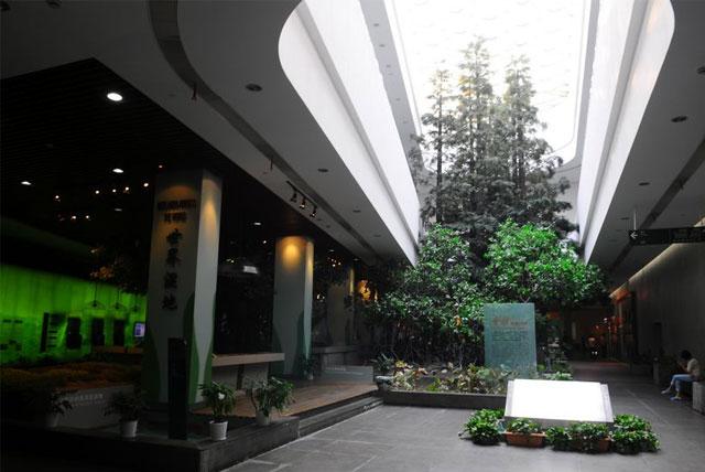 中国湿地博物