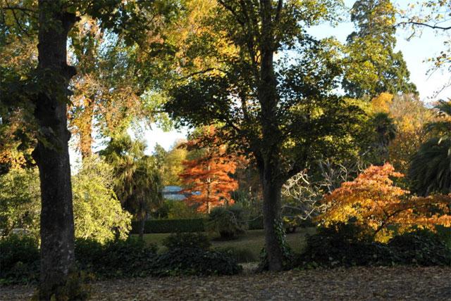 基督城植物园