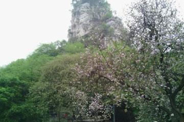 立鱼峰风景区