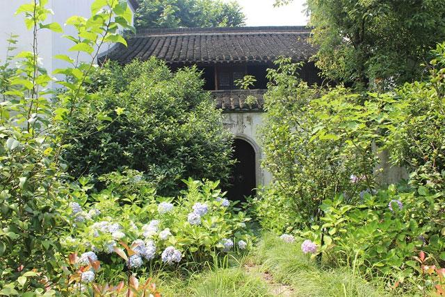 小白菜文化园
