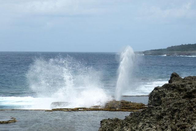 汤加塔布岛