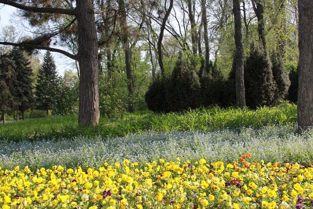 舍甫琴科公园