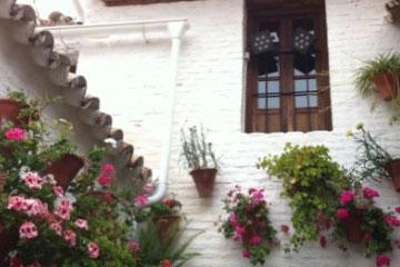 胡里奥・梅德罗・德多雷斯博物馆