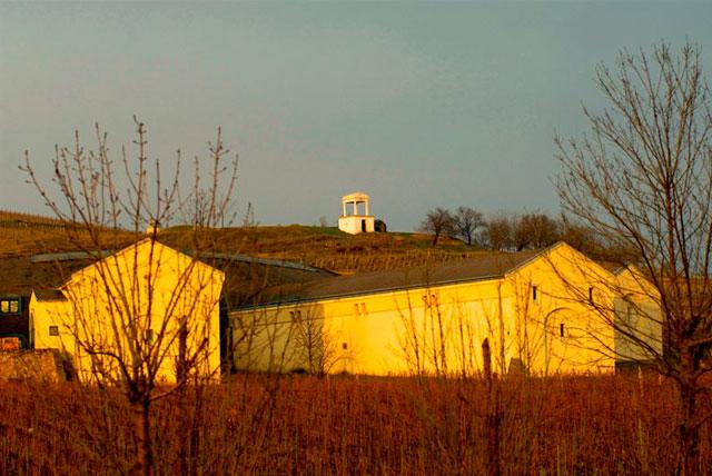 托考伊葡萄酒产区