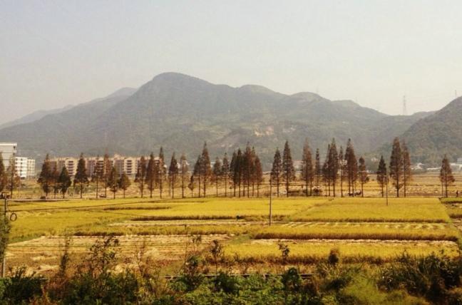 桐溪度假景区