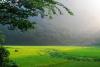 茂兰喀斯特原始森林保护区