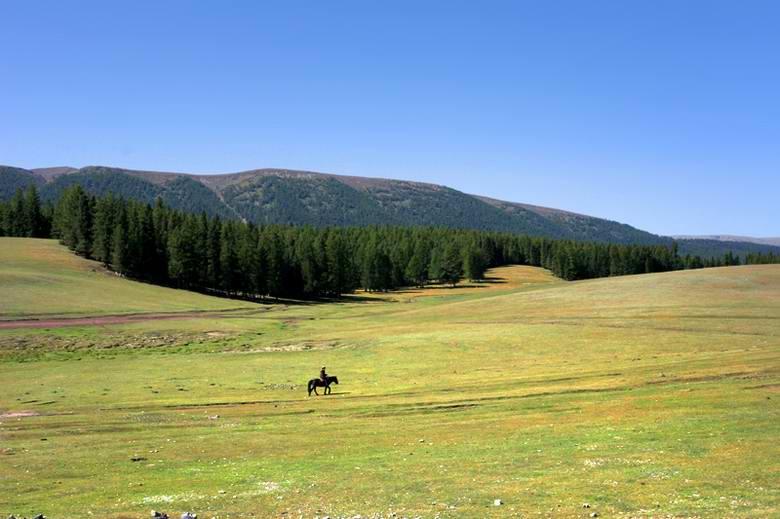 新疆哈密巴里坤草原风光