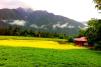 岗乡自然保护区