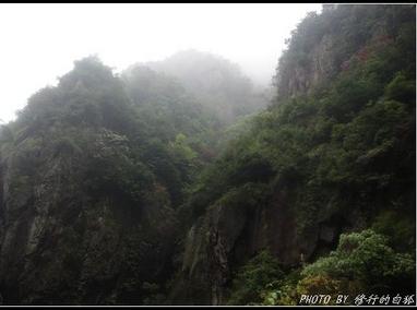 云雾紫薇山