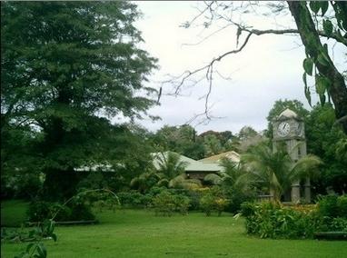 瑟斯顿花园