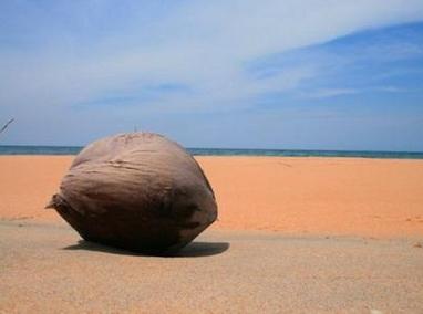 兰道阿邦海滩