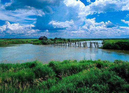 洪河国家级自然保护区