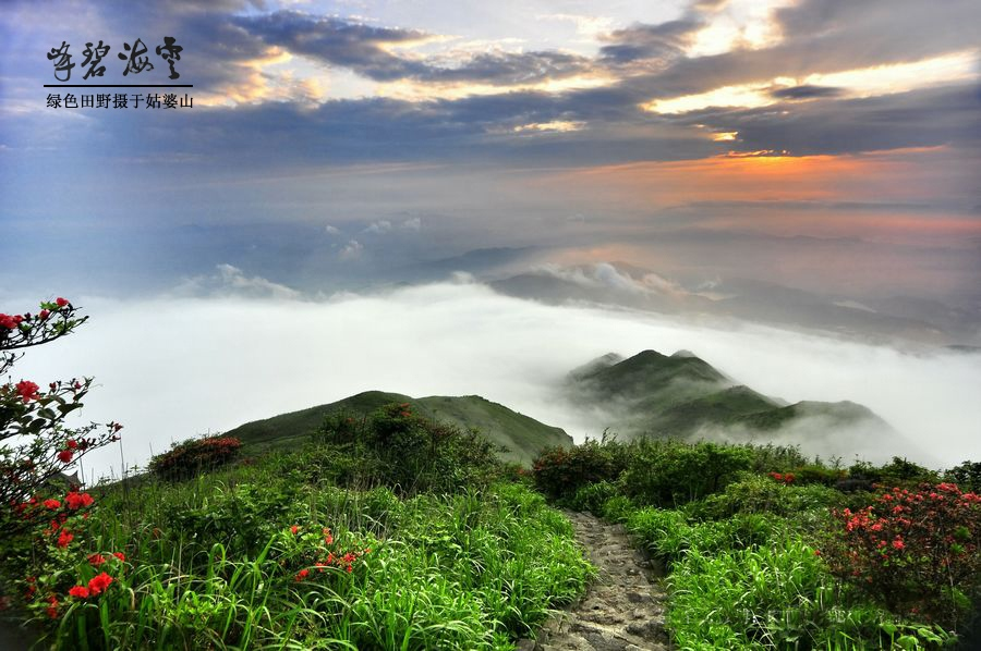 姑婆山国家森林公园