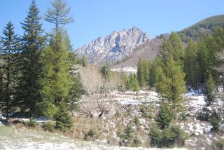 5.1假期到芦芽山、荷叶坪去看雪