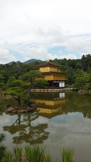 一次匆忙决定的日本之旅