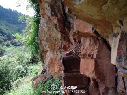 悬崖上水墨梅花素材展示