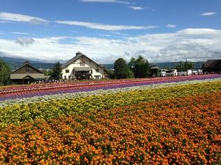 日本北海道之旅