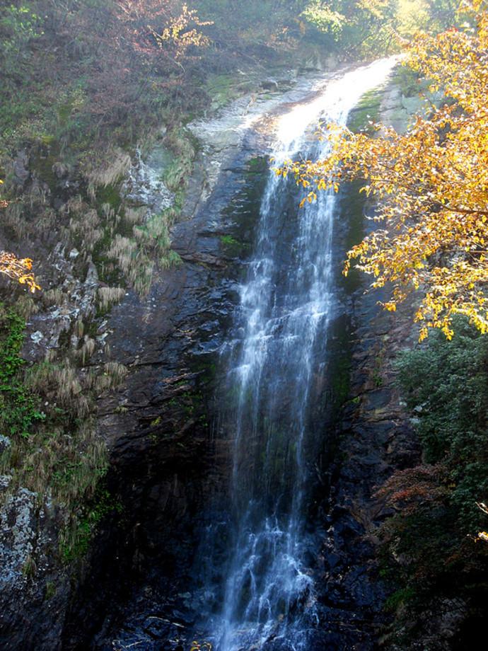 壁纸 风景 旅游 瀑布 山水 桌面 690_920 竖版 竖屏 手机